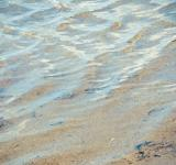 Free Photo - water ripples