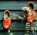Free Photo - clogs hanging on fence