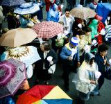 Free Photo - People with umbrella's