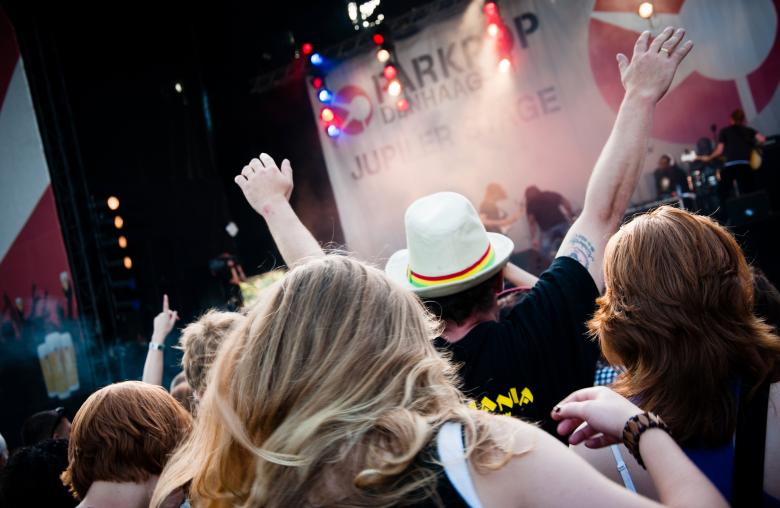 Free Stock Photo of Crowd at a music concert Created by Merelize
