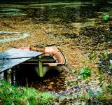 Free Photo - Little rowing boat