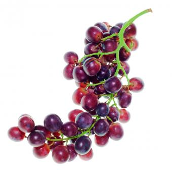 grapes isolated - Free Stock Photo