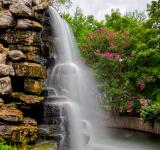 Free Photo - Zoo Waterfall - HDR