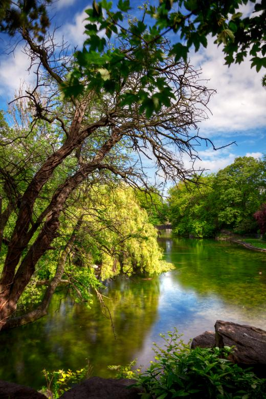 Free Stock Photo of Saint Stephen's Green - HDR Created by Nicolas Raymond