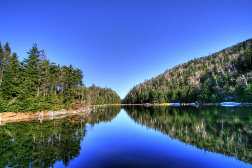Lac Spruce - HDR - Free Stock Photo