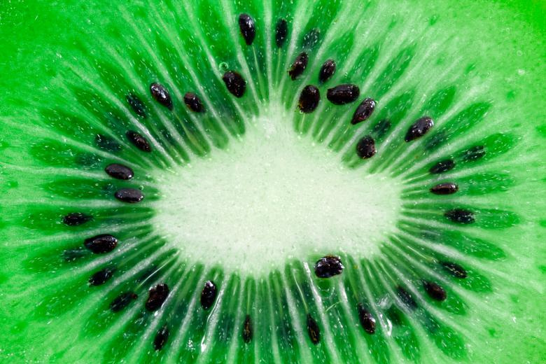 Kiwi Slice Macro - Free Organic Backgrounds