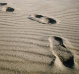 Free Photo - Footprints on the beach