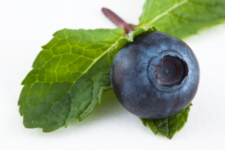 Free Stock Photo of Blueberry and Mint Created by Nicolas Raymond