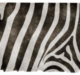 Free Photo - Zebra Stripes Grunge Paper