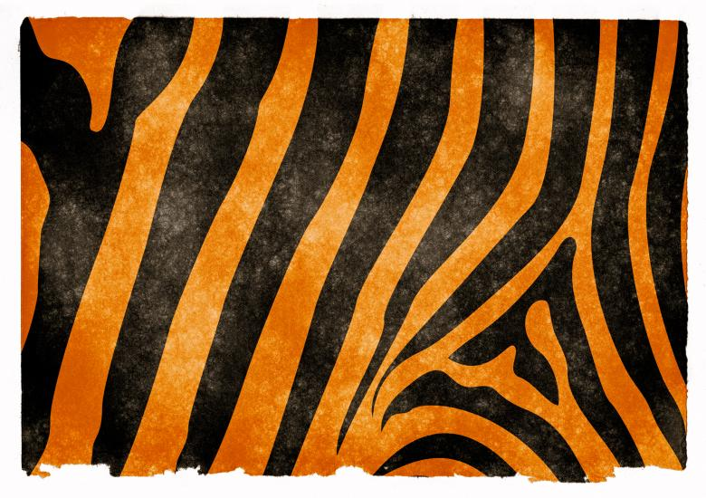 Free Stock Photo of Tiger Stripes Grunge Paper Created by Nicolas Raymond