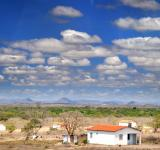 Free Photo - Caatinga
