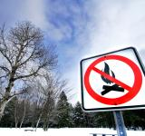 Free Photo - Winter Campfire Warning Sign