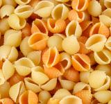 Free Photo - Conchiglie Pasta