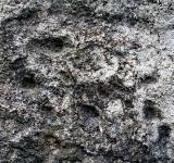 Free Photo - Weathered Stone Texture