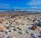 Free Photo - Rugged Beach - HDR
