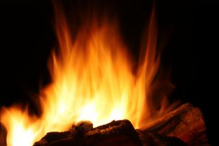 Burning Campfire Free Photo
