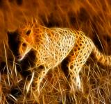 Free Photo - Sprinting Cheetah Abstract