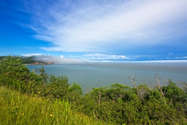 Free Stock Photo of Fundy Park Scenery - HDR Created by Nicolas Raymond