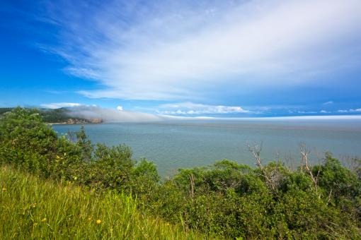 Fundy Park Scenery - HDR - Free Stock Photo
