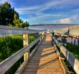 Free Photo - Hopewell Beach Boardwalk - HDR
