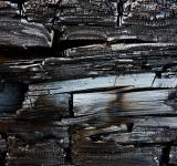 Free Photo - Charred Wood Texture