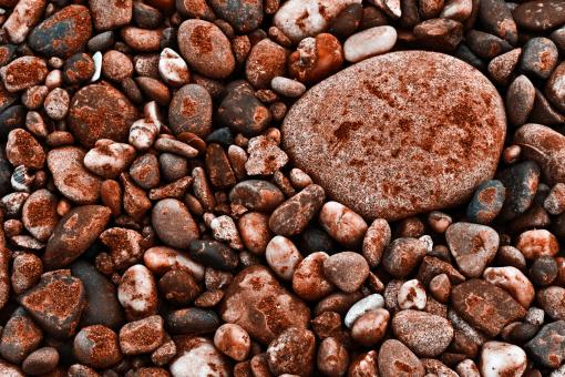 Seabed Rocks Texture - Free Stock Photo