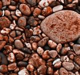 Free Photo - Seabed Rocks Texture
