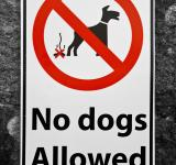 Free Photo - No Dogs Allowed Sign