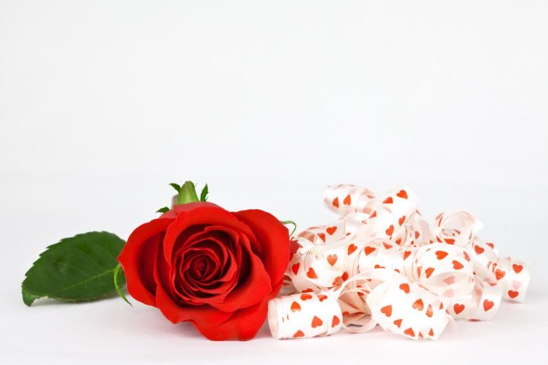 Free Stock Photo of Red Rose and Ribbons Created by Nicolas Raymond