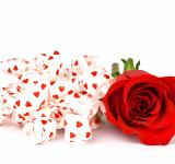 Free Photo - Red Rose and Ribbons