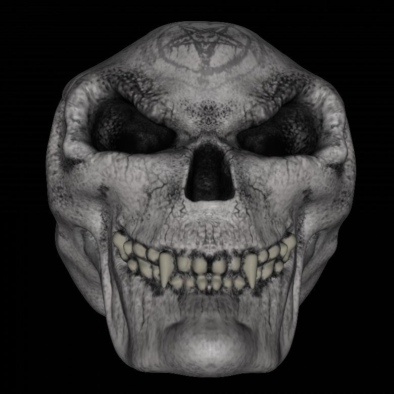 Free Stock Photo of Skull Created by Charles Oliver