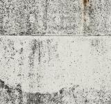 Free Photo - Light Grunge Concrete Wall