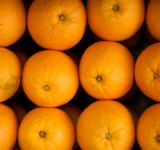 Free Photo - oranges fruit