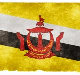 Free Photo - Brunei Grunge Flag
