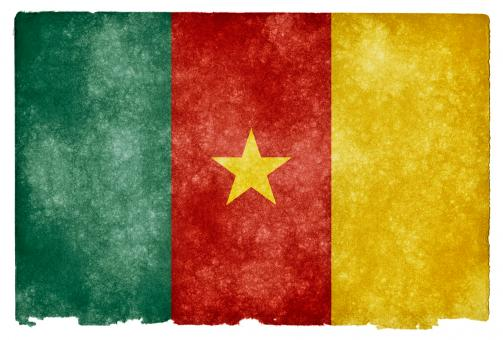 Cameroon Grunge Flag - Free Stock Photo