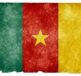 Free Photo - Cameroon Grunge Flag