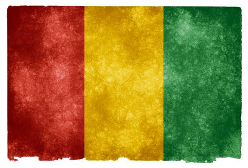Guinea Grunge Flag - Free Stock Photo