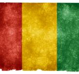 Free Photo - Guinea Grunge Flag