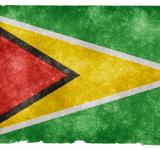 Free Photo - Guyana Grunge Flag