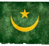 Free Photo - Mauritania Grunge Flag