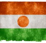 Free Photo - Niger Grunge Flag