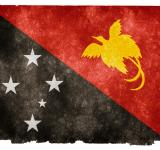 Free Photo - Papua New Guinea Grunge Flag