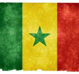 Free Photo - Senegal Grunge Flag