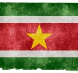 Free Photo - Suriname Grunge Flag