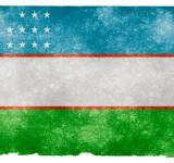 Free Photo - Uzbekistan Grunge Flag