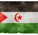 Free Photo - Western Sahara Grunge Flag