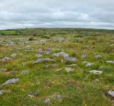 Free Photo - Poulnabrone Landscape - HDR