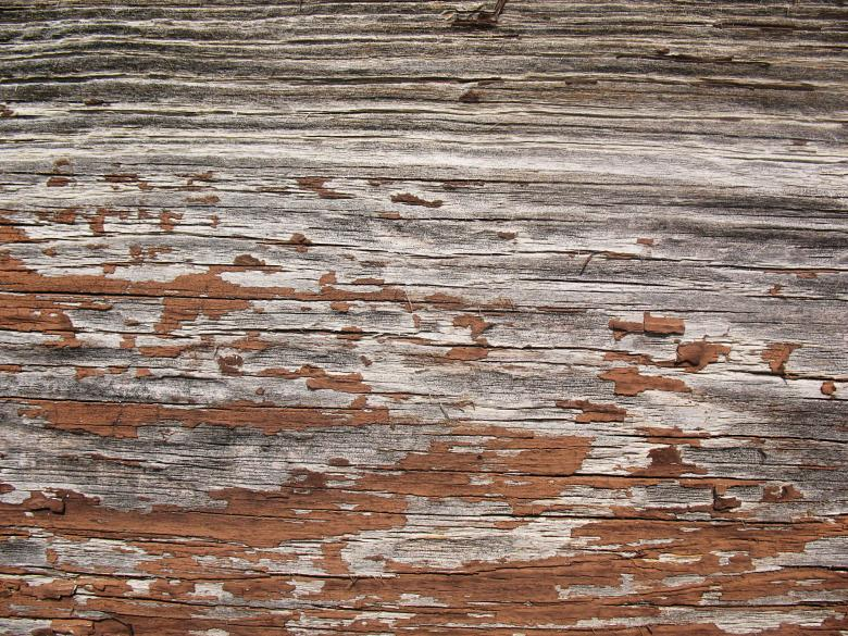 Free Stock Photo of Wood Texture Created by Free Texture Friday