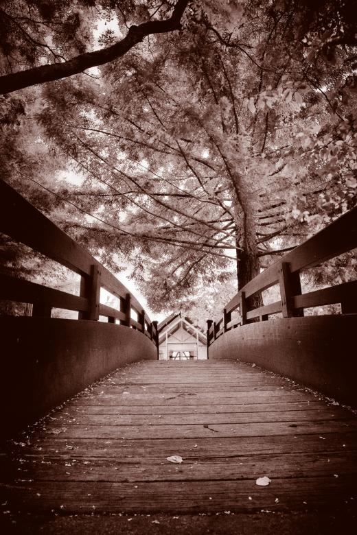 Free Stock Photo of Sepia Bridge Created by Nicolas Raymond