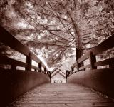 Free Photo - Sepia Bridge